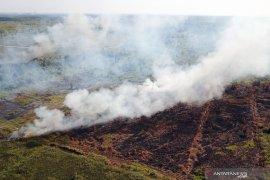 12 hot spot terpantau di Kalimantan Barat