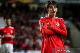 Mourinho: Joao Felix siap memberikan yang terbaik