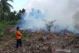 BPBD Kayong Utara sigap atasi kebakaran lahan