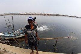 Kata Nelayan, Pencemaran minyak-limbah berdampak fatal pada hasil tangkapan