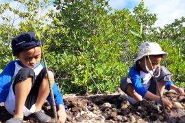 Japesda inisiasi penanaman mangrove di Torosiaje-Pohuwato