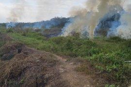 Dua titik api di Tabalong terpantau satelit