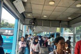Imbas listrik padam, TransJakarta berlakukan tarif Rp0