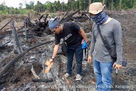 1 Kades diperiksa terkait pembakaran lahan di Ketapang