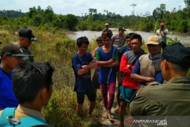 Satpol PP Bangka Selatan tertibkan tambang ilegal di areal persawahan