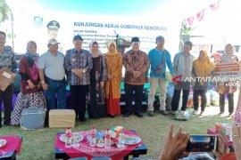 Gubernur Bengkulu berikan bantuan sapi kepada Poktan Mukomuko