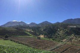 Tahura R Soerjo inventarisasi kerusakan hutan Gunung Arjuno pasca-kebakaran