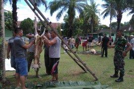 Kodim 0204/DS gelar shalat dan bagikan hewan kurban Idul Adha