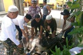 PWI Langkat bagikan daging kurban untuk anggota dan masyarakat