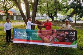 BNI Syariah Cabang Banda Aceh qurban enam ekor ternak