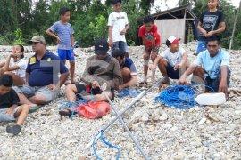 BKSDA pasang jaring tangkap buaya Wayari