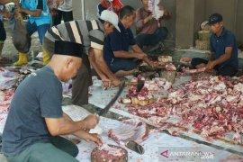 Panitia rumah sakit potong 18 hewan kurban