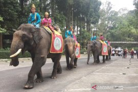 Taman Safari Bogor gelar Parade Satwa peringati Hari Kemerdekaan