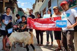 Coca-Cola serahterimakan 111 hewan kurban Idul Adha
