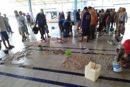 Tumpahnya minyak mentah tidak pengaruhi target produksi ikan di Karawang