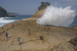 Warga pesisir Tulungagung pertahankan dua pantai konservasi penyu