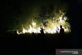 Pemkab Bangka Barat gandeng perusahaan swasta tangani kebakaran hutan