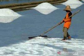 Produksi garam di Pamekasan sudah mencapai 125 ribu ton