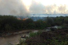 Pembakar lahan ditangkap Satgas Kebakaran Hutan dan Lahan Musi Rawas