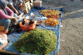 Harga melonjak dampak kemarau, petani cabai di Banten raup keuntungan