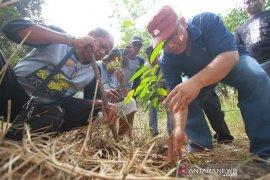 LKBN Antara Biro Kalsel Melakukan Penaman Pohon