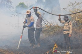 Kapolres Pelalawan sampai menginap di lokasi kebakaran