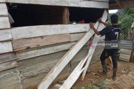 Gajah rusak rumah warga translok di Nagan Raya Aceh