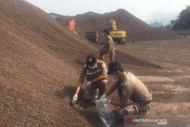 Babel ekspor  30.000 ton cangkang sawit ke Jepang pada Agustus