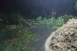 Longsor dan pohon tumbang tutup badan jalan Sibolga-Tarutung