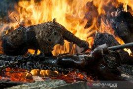 Pemusnahan Satwa Awet Bandung Zoo