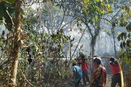 DLH Paser padamkan kebakaran lahan di sekitar Tahura Lati Petangis