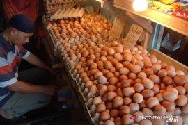 Harga telur ayam di Gorontalo turun karena permintaan konsumen tinggi