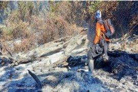 Kebakaran kawasan puncak Gunung Ciremai sudah padam