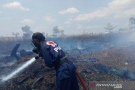 PMI Banjar Kalsel terjunkan relawan padamkan kebakaran hutan di perbatasan