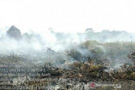 Hujan padamkan 80 persen karhutla di  Aceh Barat