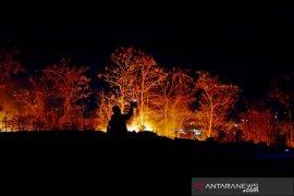 Kebakaran hutan di Gowa Page 1 Small