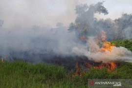 Kebakaran lahan di calon ibu kota baru meningkat