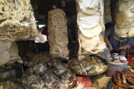 Buah tangan ikan asin air tawar dikembangkan Lampung
