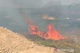 Terbakar, lahan di area pertambangan Sukabumi