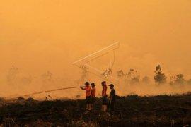 Kendala pemadaman api pembakar semak meningkat bila  kanal masyarakat kering