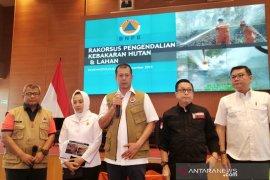 BNPB sebut karhutla terbesar di Riau lebih dari 40 ribu ha