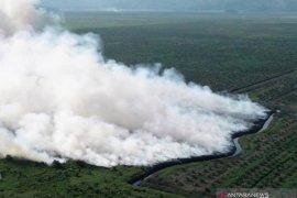 Satgas Karhutla tenggelamkan lahan gamut yang terbakar