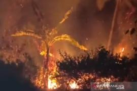 Ketua PBNU desak pemerintah cabut izin perusahaan pembakar hutan