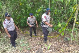 Granat temuan warga Aceh Utara diamankan Tim Jibom Brimob