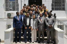BUMN didorong jadi mitra di Benua Afrika