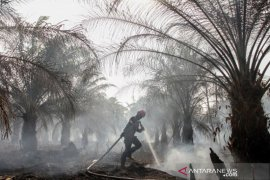 Upaya pencegahan karhutla di masa pandemi COVID-19