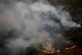 Cegah deforestasi,  Brazil luncurkan operasi militer di hutan Amazon