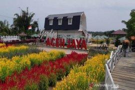 Rumah bernuansa Eropa tambah keindahan taman bunga Celosia