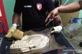 Warga temukan mayat pria tanpa identitas sudah membusuk di Cianjur
