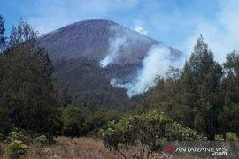 Luas hutan Gunung Semeru yang terbakar capai 198 hektare